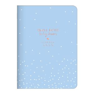https---haikai.vteximg.com.br-arquivos-agenda-brochura-2020-tilibra-small-notes-for-big-dreams-planner-2020-azul